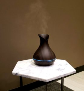 Aromatherapy Diffuser Releasing Comforting Essential Oil Scented Mist to calm dental patients.